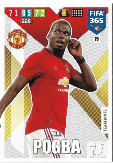 F.20 Team Mate - Pogba
