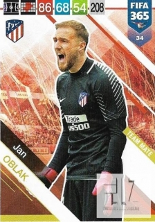 F.19 Team Mate - Oblak