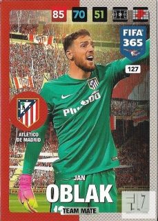 F.17 Team Mate - Oblak
